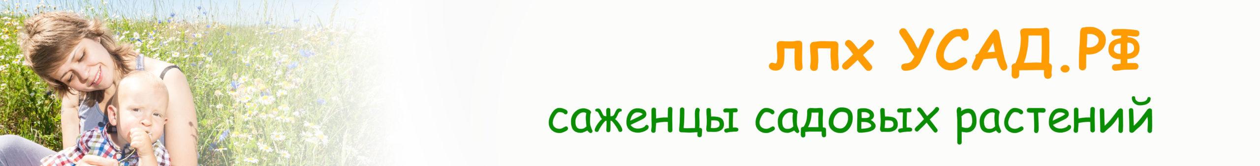 УСАД.РФ — саженцы
